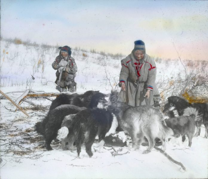 Sami man and woman - feeding the dogs. Finnmark, Norway. Hand-coloured photo. | Photo: Alf Schrøder co - digitaltmuseum.no FBib.01005-052 - Public domain.