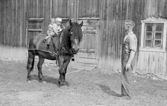 On the old Norwegian farm, the children were never far away from their parents - or the domestic animals. No adventure was more exciting than to sit on the horse's back. The location is believed to be Brandbu, Oppland, Norway - and the photo was taken in 1948. | Photo: Leif Ørnelund - digitaltmuseum.no OB.Ø51/1264 - cc by-sa.