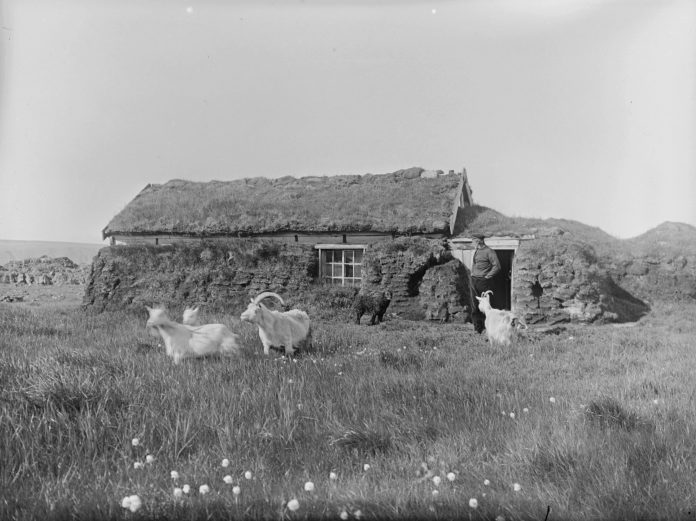 Utilising nature's very own insulation: a man outside his turf covered cottage - with his dog and his goats. Taken in Syltevik, Båtsfjord, Finnmark, Norway - around 1910. | Photo: Johan Oskar Andreas Grasmo - digitaltmuseum.no FBib.82011-008 - Public domain.