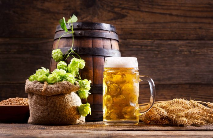 Beer - and ingredients.   Photo: Nitr - adobe stock - copyright.