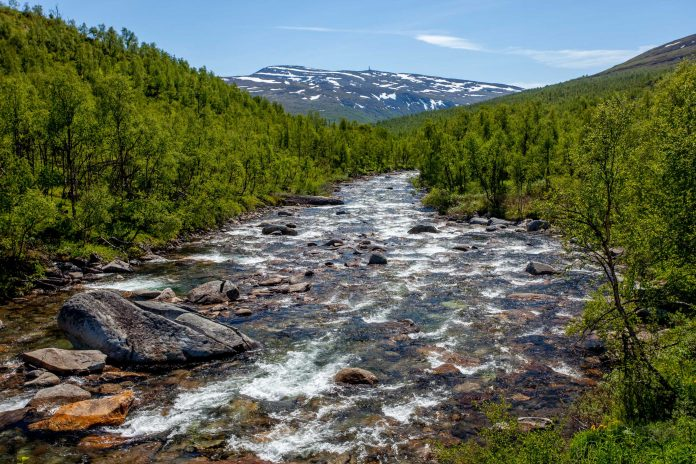 Mountain river - Norway. | Photo: martinhlavacek79 - adobe stock - copyright.