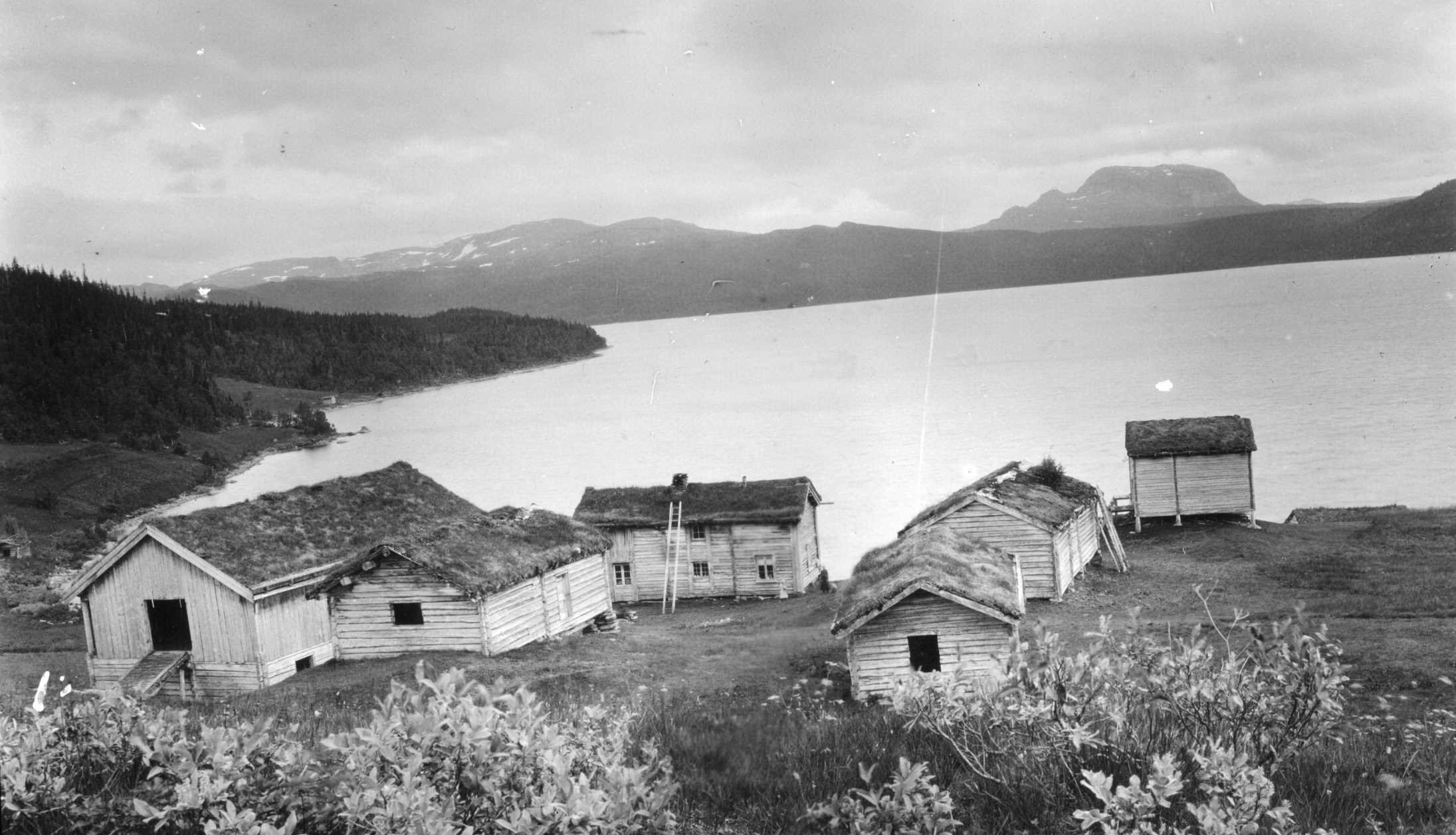 The farm Røssvassholmen and the lake Røssvatnet - around 1900-1920. | Photo: Severin Worm-Petersen - Norsk teknisk museum cc by.